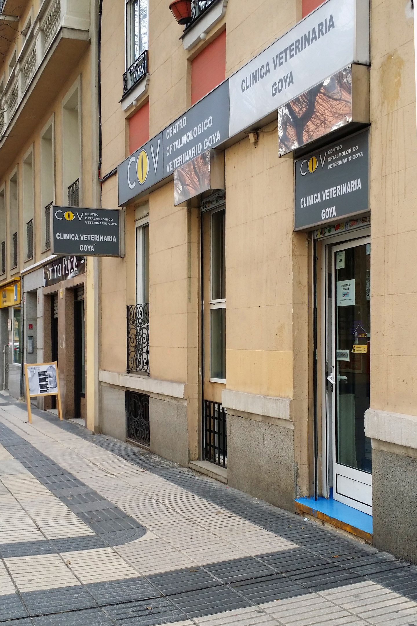 Madrid veterinarian for your pets