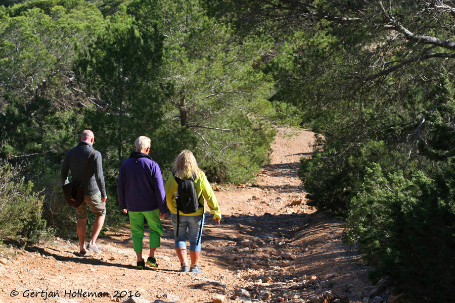 our big move to Ibiza Spain #ibiza2016 #ourbigmove beach  #hike #secret #hikes #walks #nature #ibiza hundred million years euro